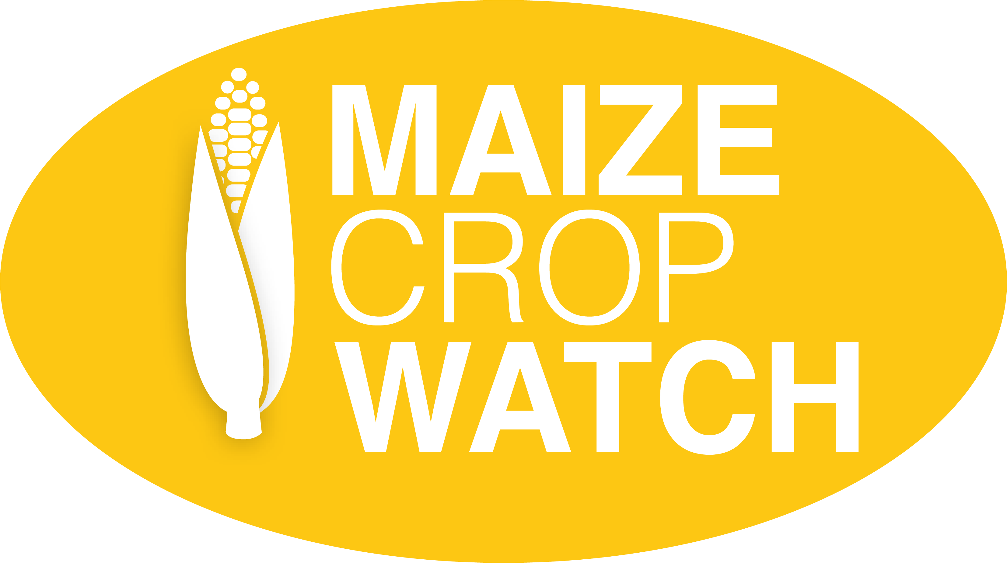More from Maize Crop Watch