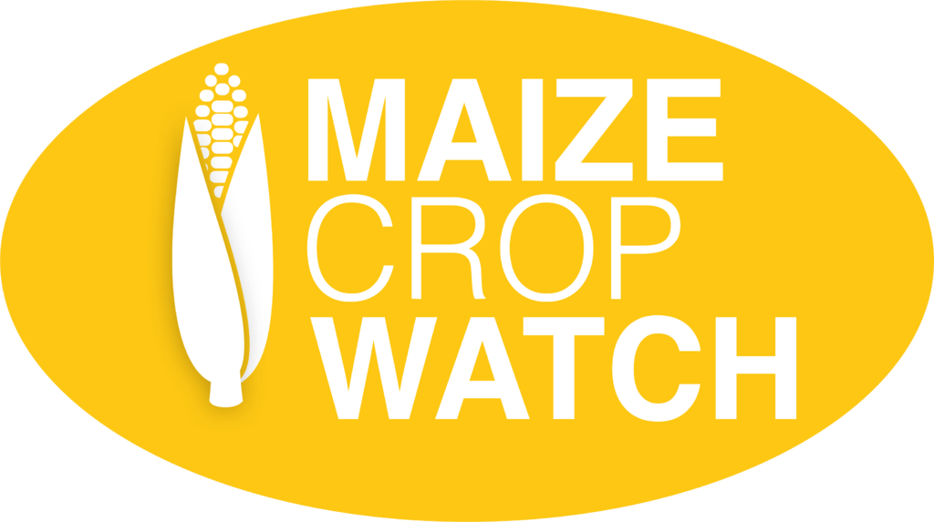 Maize Crop Watch