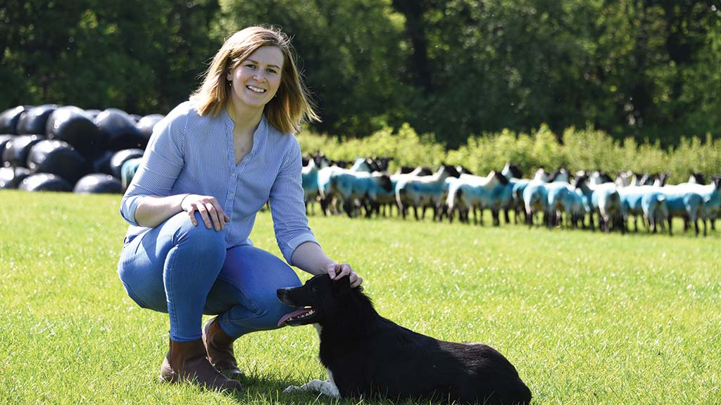 Making the most of opportunities - Young farmer builds sheep and beef enterprise