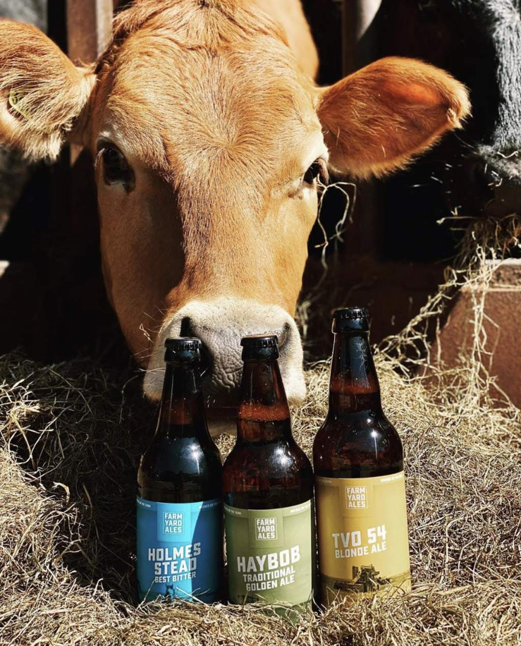 8-9pm, 1-2am: Farm Yard Ales ONE YEAR'S supply of beer!