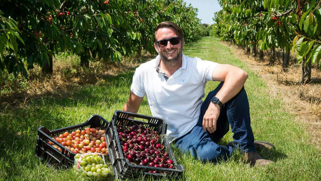 'I'm trying to do less things now, but do them better' - Large scale fruit farming with an eye on the future