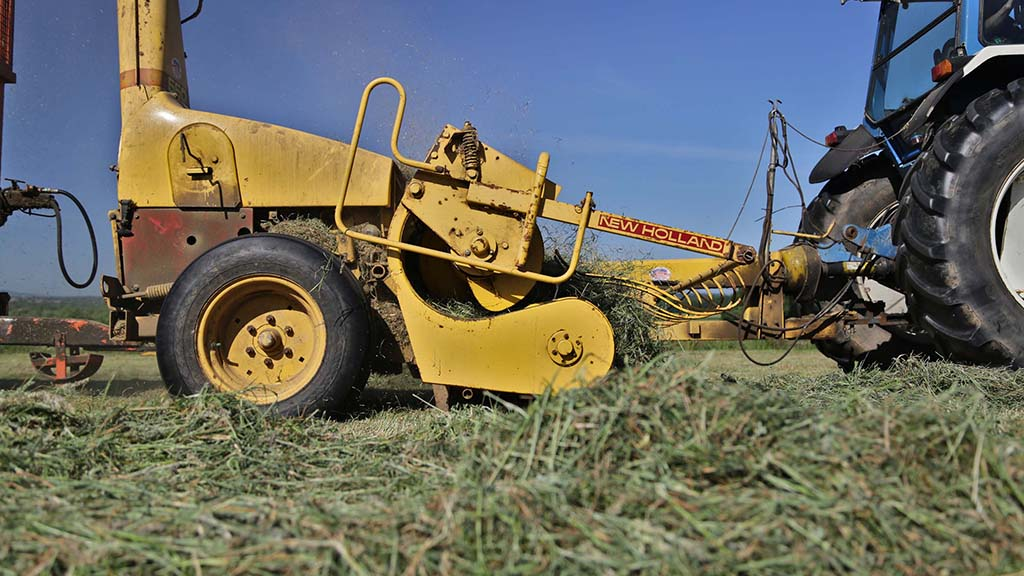 The Zedelgem-built trailed chopper has been reliable and feeds well from the mower swaths.