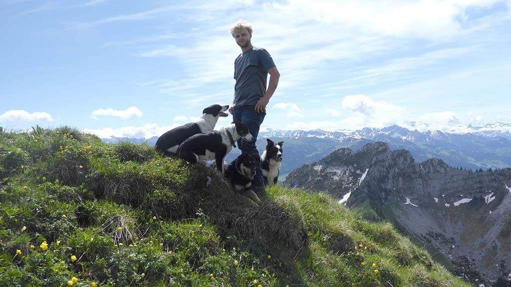 Shepherding in the Swiss Alps - A way of life steeped in cultural history