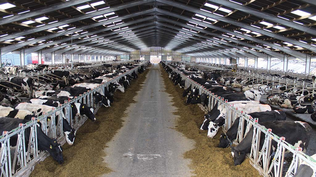 The new cubicle shed was completed in 2019.