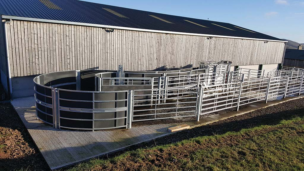 In 2018, Tom installed a new cattle weighing system.