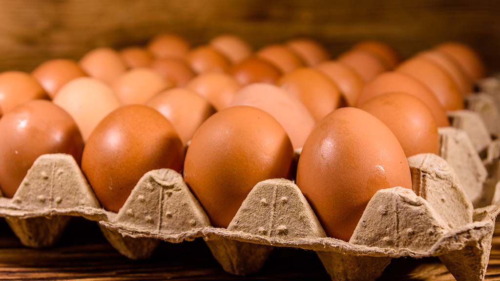Pandemic pushes egg sales to record highs
