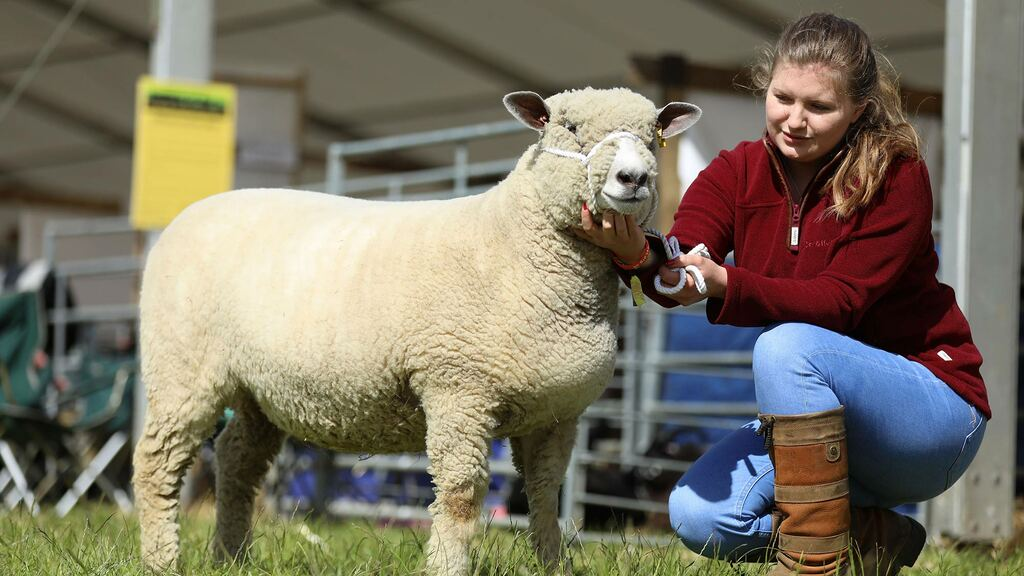 "Young farmer focus: Phillipa Gray - ""A change in attitudes could mean wool is on the verge of a comeback."""
