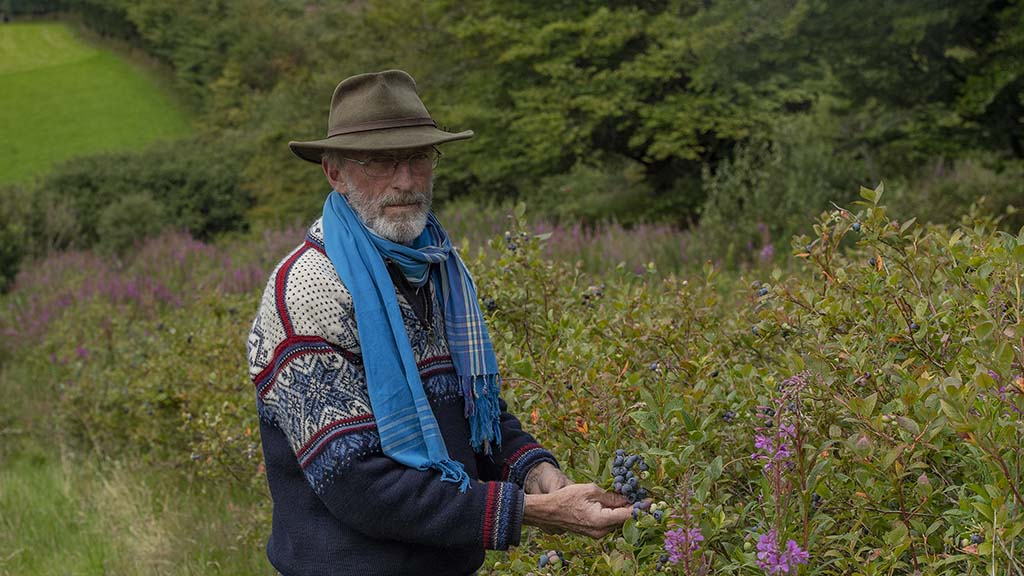 How an abandoned crop led the way to blueberry farming success on Exmoor