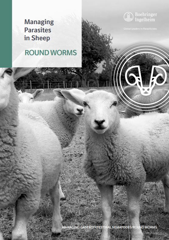 Managing Parasites in Sheep - Roundworms