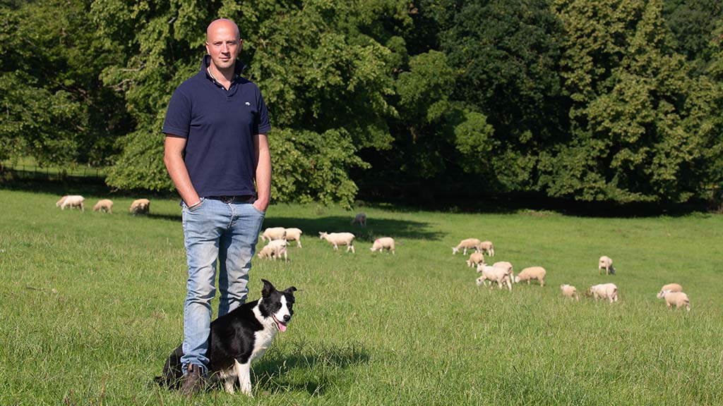Music teacher finds joy in growing his flock - balancing the two