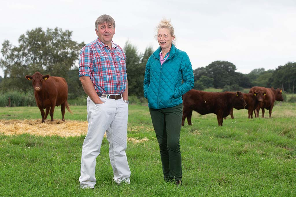 Bright future ahead for Yarn Hill Lincoln Red herd