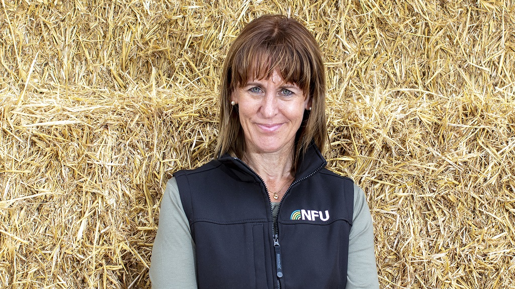 Farming matters: Minette Batters - 'Let's lead the net zero charge from the front'