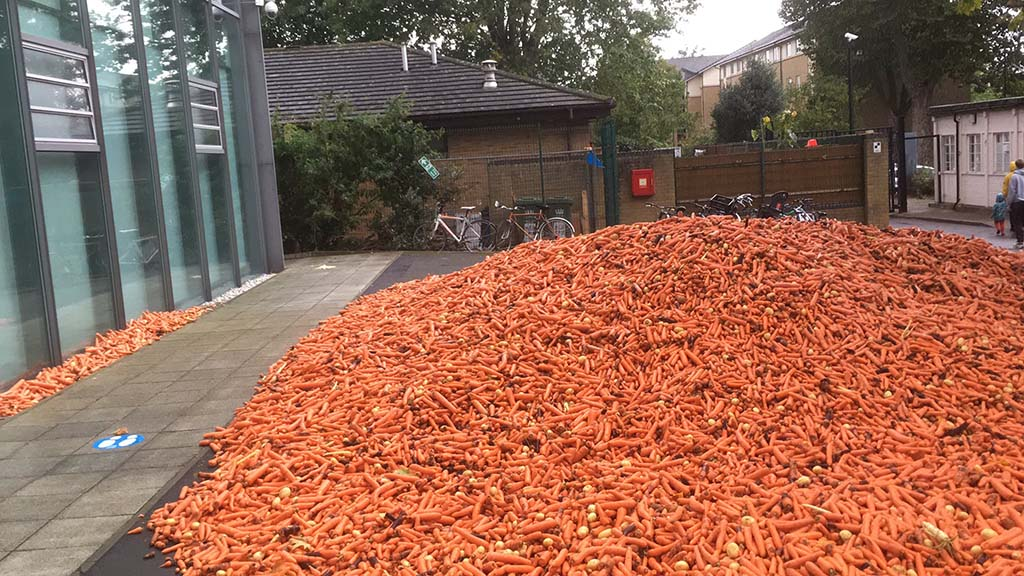 Artist dumps 29 tonnes of carrots to highlight tensions between rural areas and cities
