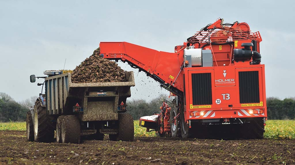 Better weather promises beet yield boost amid season's challenges