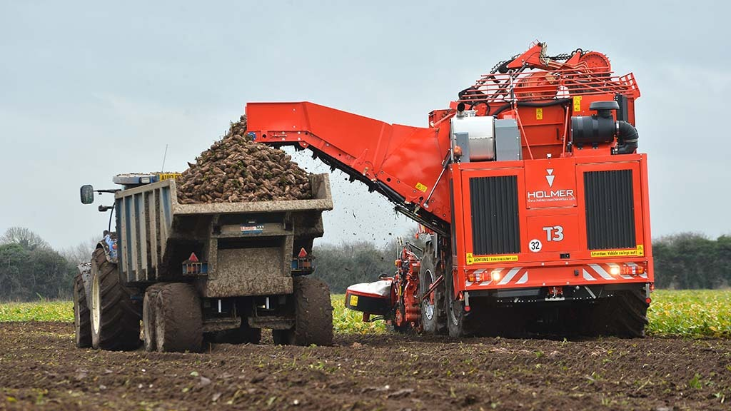 Sugars good but root weights 'a little low' as beet campaign kicks off in Suffolk