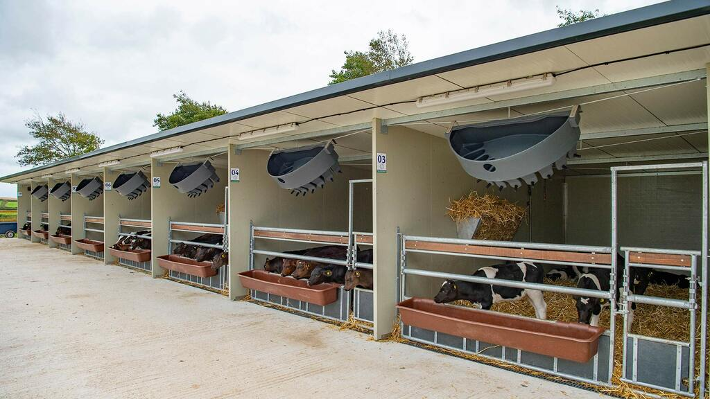 The merits of purpose-buily calf rearing facilities