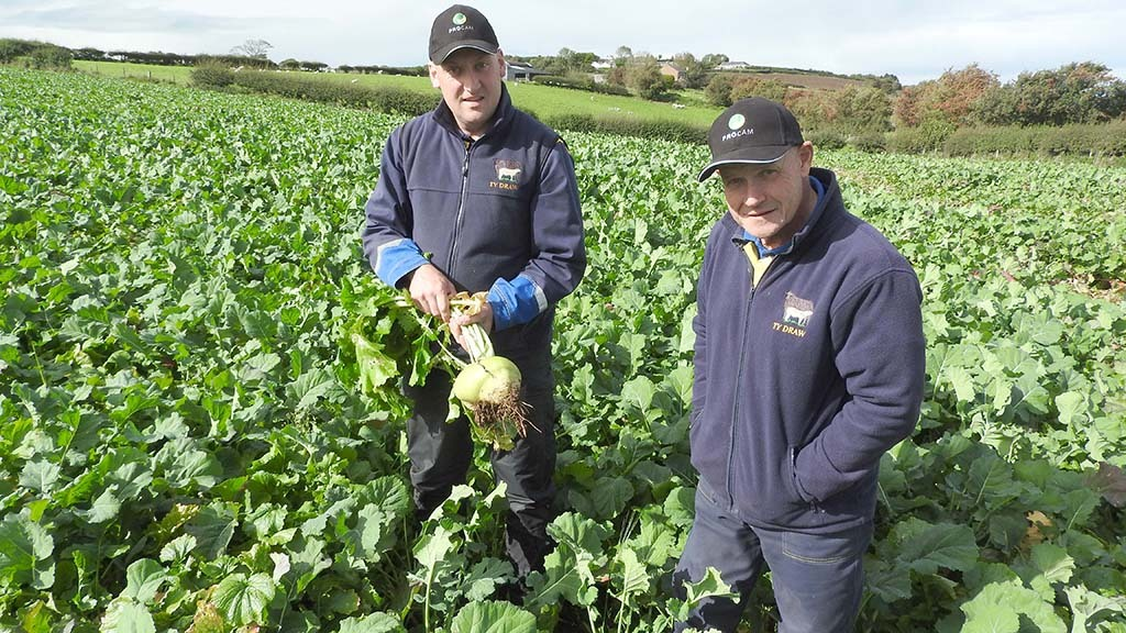 Forage focus key to business transformation