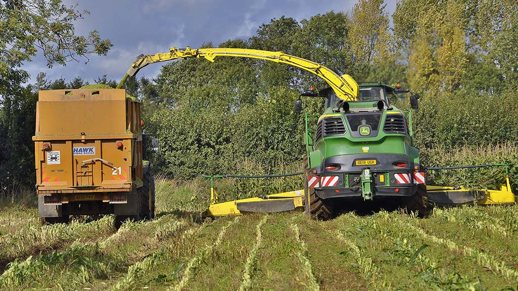 Powered by a 24.2-litre, V12 Liebherr engine, the 9700i has coped well with a John Deere 12-row maize header.