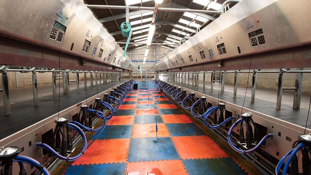 The rapid exit parlour has contributed to rising milk yields and improved cow health.