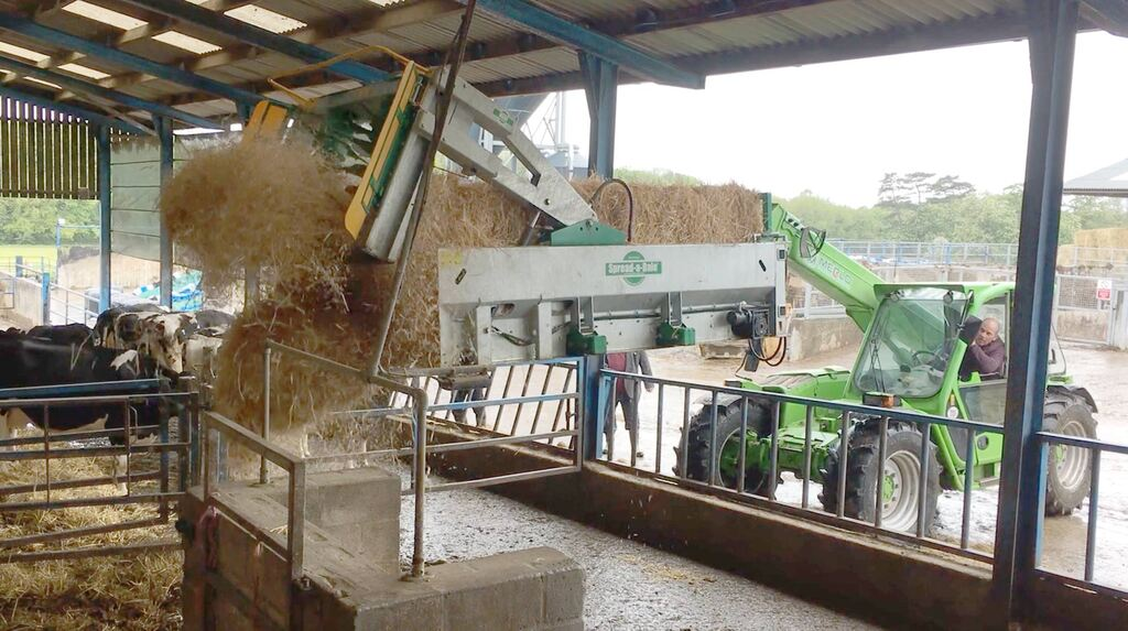 In the field: Wood Park farm, University of Liverpool