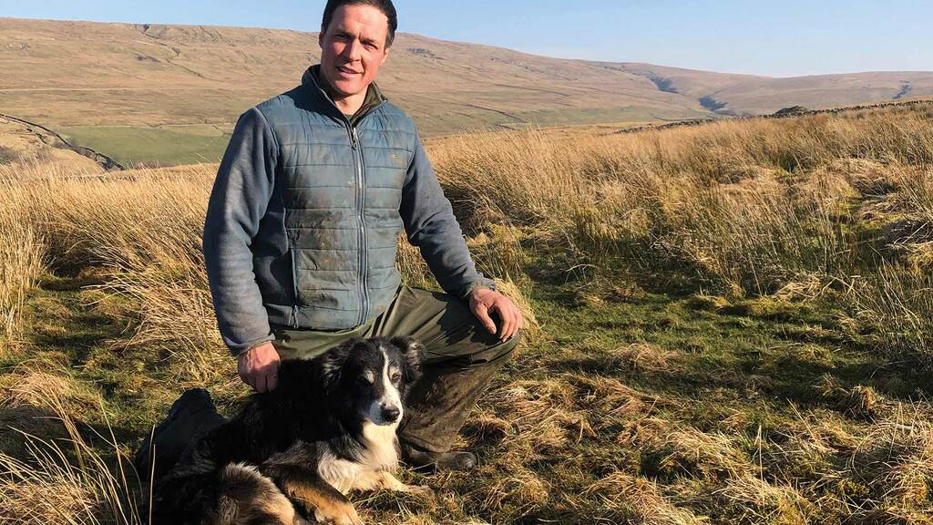 In your field: Thomas Carrick - 'Most farmers on these hills would swap all their triplets for singles'