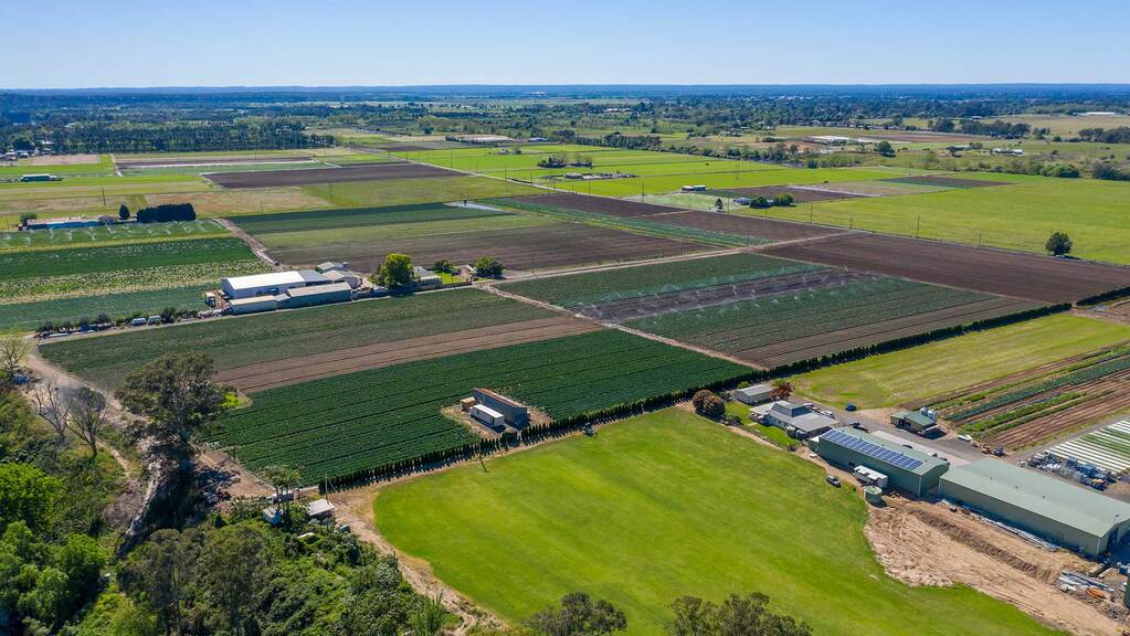 Australian horticulture sector hit by labour shortage
