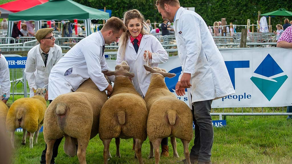 Agricultural shows bring a wonderful mix of people together, says Stephen Dodsworth.