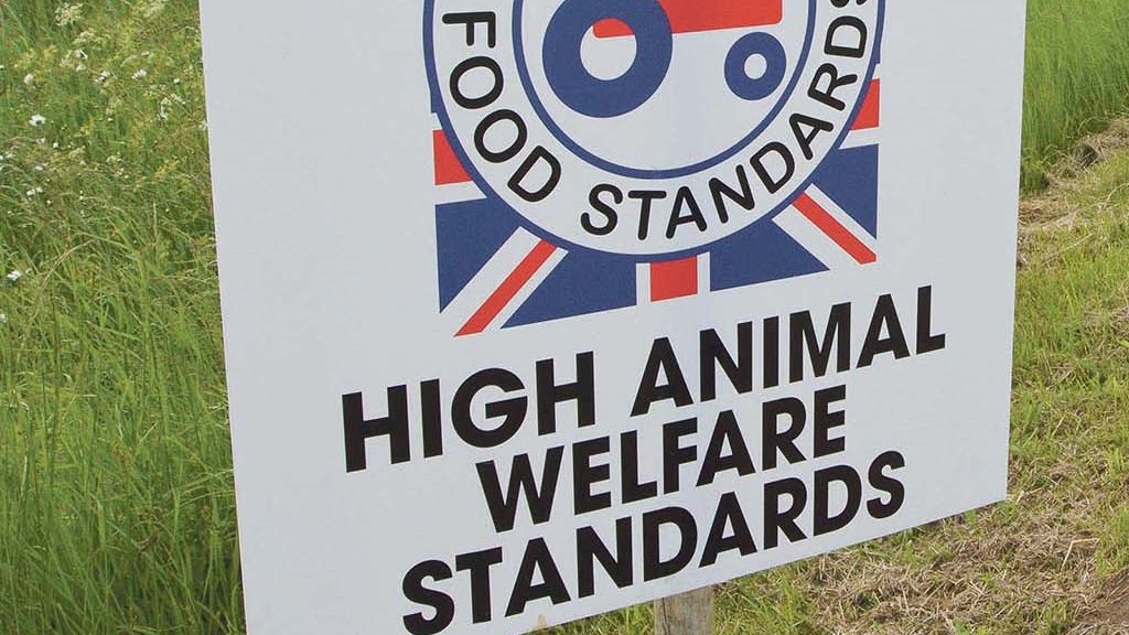 From the editor: Promotion of farm standards continues to vex the industry