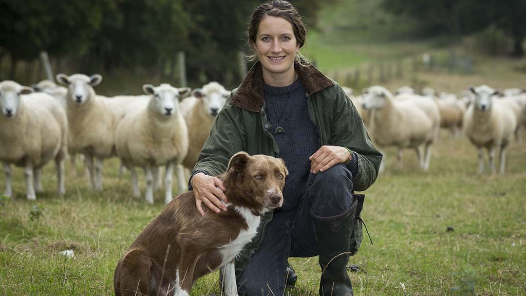 In your field: Marie Prebble - 'I am in Iceland with plenty of shearing ahead of me'
