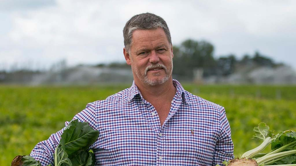 Could fodder beet have a place in your beef system?