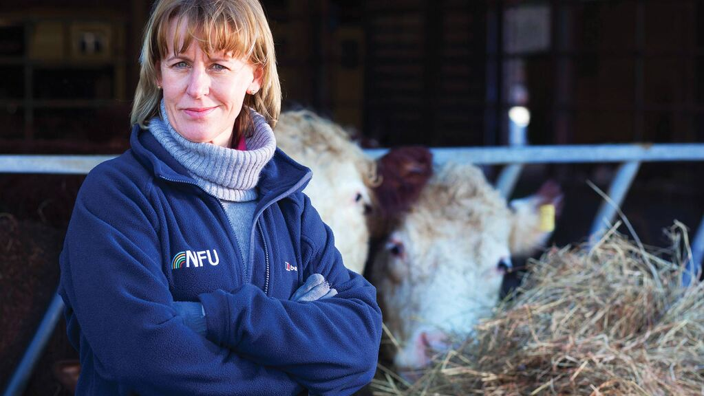 'Levelling up' rural Britain can create jobs, boost green economic growth and improve wellbeing – NFU