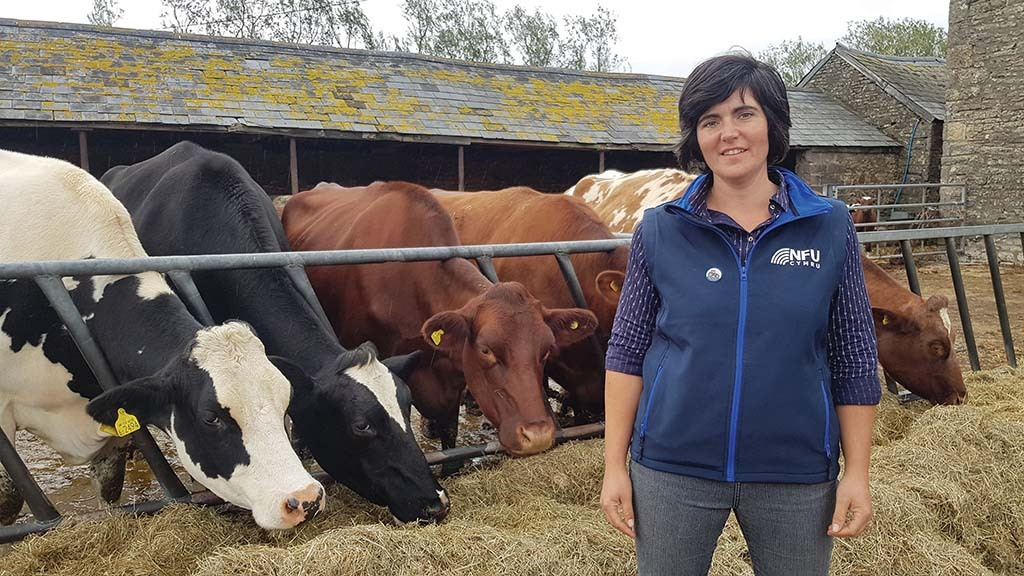 Farming matters: Abi Reader - 'I have to sit tight and ride the bTB testing rollercoaster'