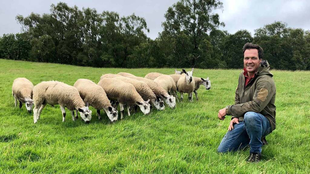 In your field: Thomas Carrick - 'Cattle are near calving and sheep are in good condition'