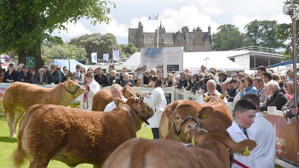 Highland Show buoyed by £1.8m bailout package