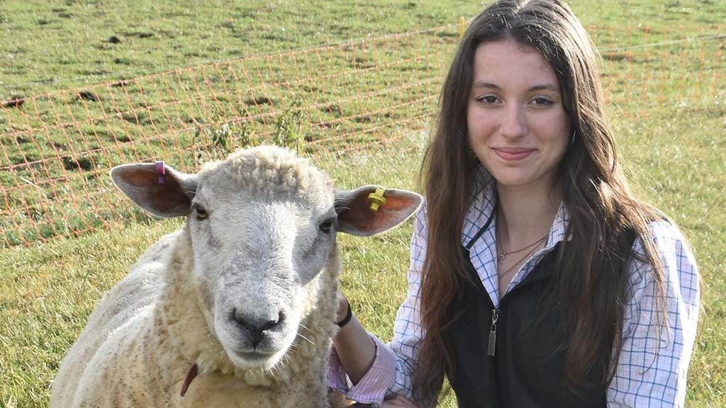 Young farmer focus: Rhianna Melton - 'I believe agriculture is one of the best industries out there'
