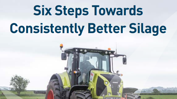 Six Steps Towards Consistently Better Silage