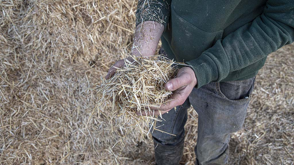 Steven Bowen grinds straw to a length ranging from 5-10cm.