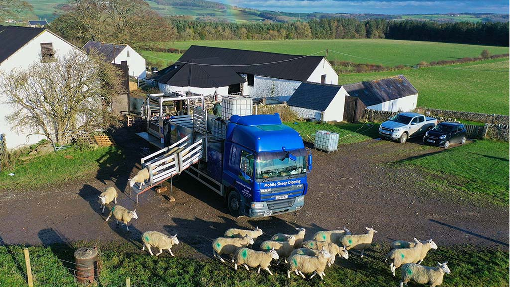Sheep dipping contractor designs dipping machine inspired by local chip shop