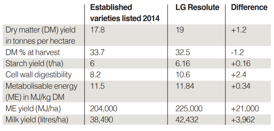 TABLE 1 Comparison in the performance (yield and quality) of LG Resolute versus established varietie