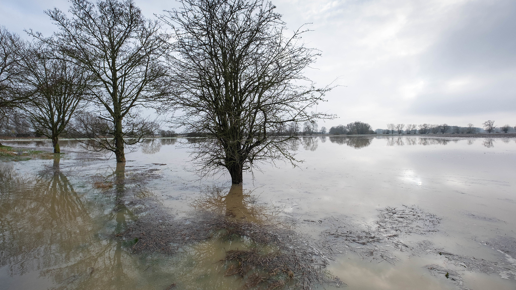 Flood warnings increase as Storm Christoph brings more rain