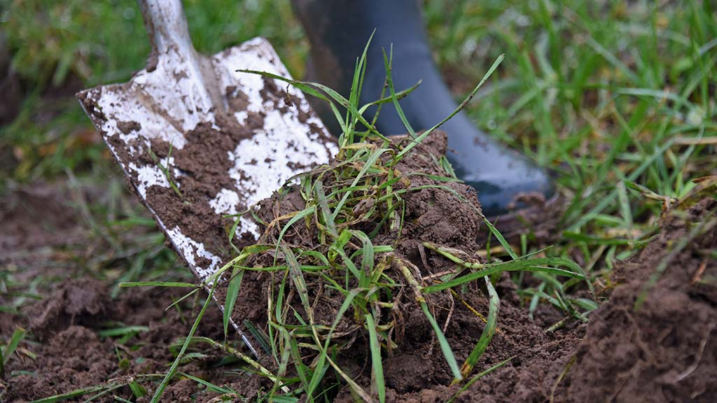 Embrace the learning from our forefathers to improve soil health