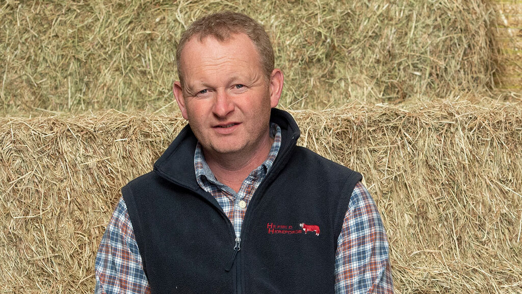 In your field: Mike Harris - 'Our new hedges are being admired by us and scores of walkers'
