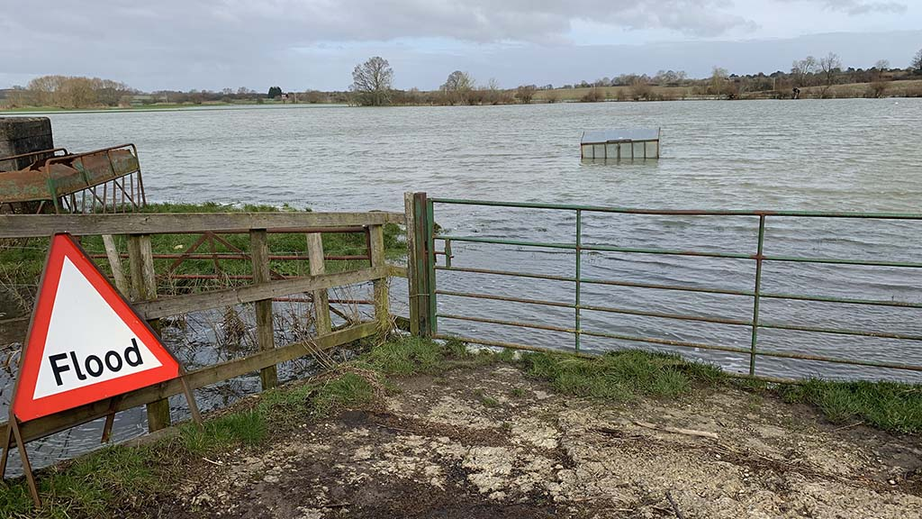 Government must 'show leadership' to address flooding nightmare