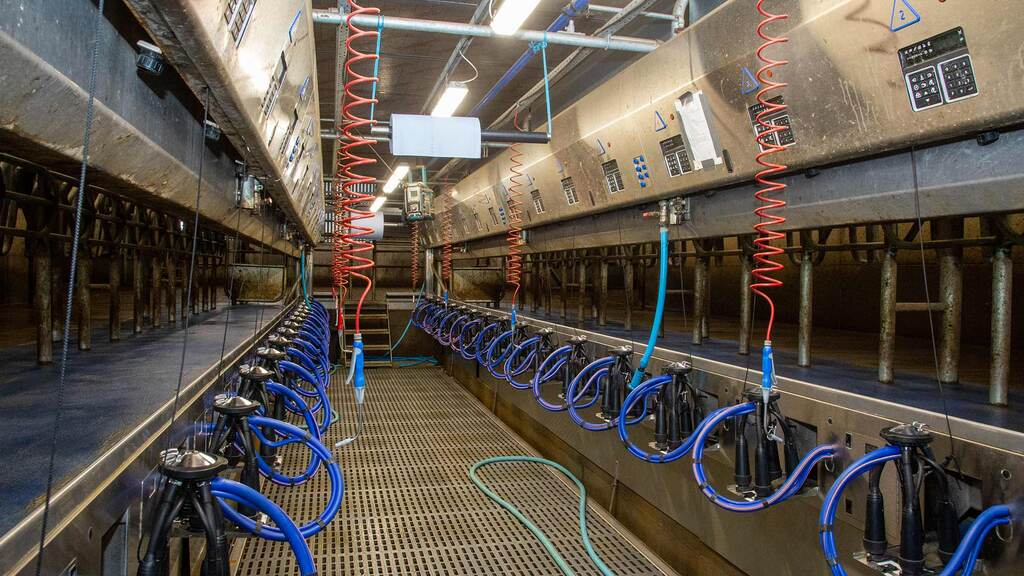 Cows are milked through a two-year-old 32:32 DeLaval rapid exit parlour.