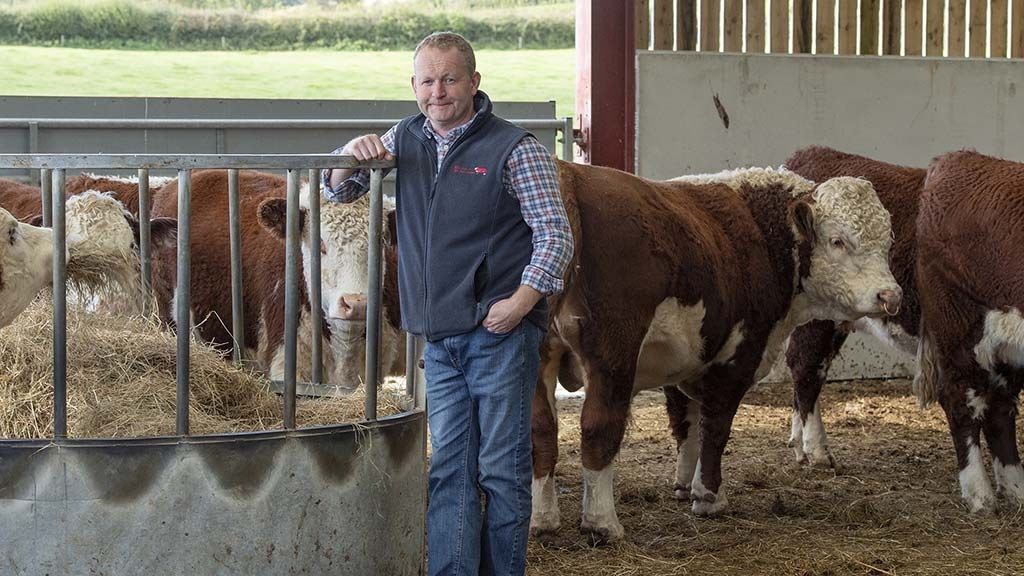 In your field: Mike Harris - 'Calving-induced sleep deprivation will continue'