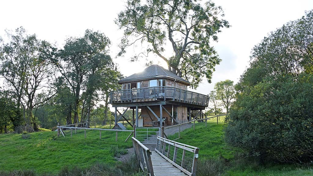 The family opened their first treehouse to guests in June 2018.