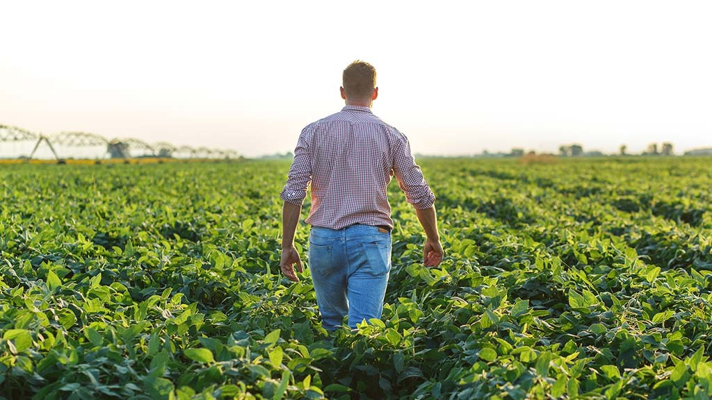 George Dunn: Farming can provide new entrants and progressive farmers with great opportunities