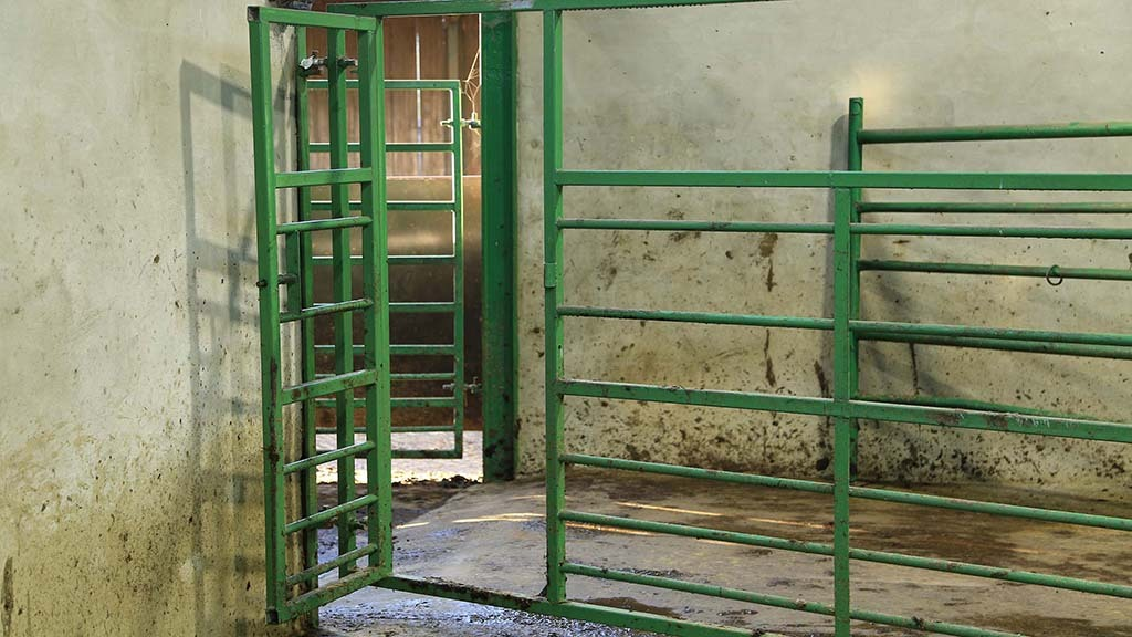 The handling system features several fabricated gates, such as this one with a personnel gate for easy access and egress to the holding pen.