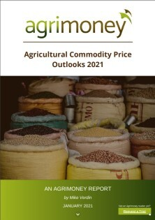 New report: Agricultural Commodity Price Outlooks 2021