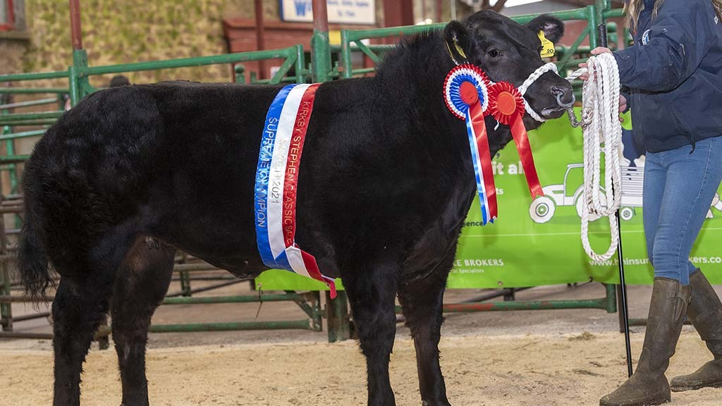 The champion from John Smith-Jackson which sold for £6,000